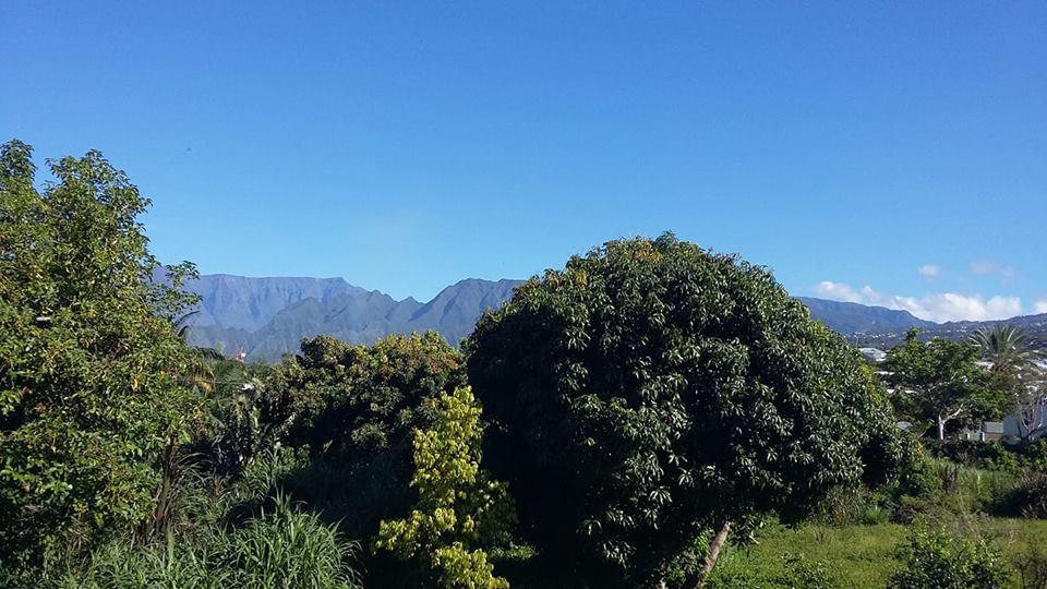 Immersion sur l'île de La Réunion