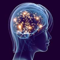 conscience-cerveau